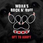 Rock N' Ruff